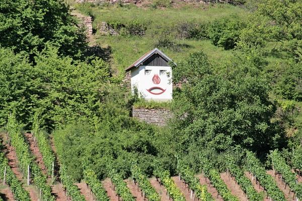 Foto Gerätehäuschen in den Weinbergen mit Gesicht auf der Fasade