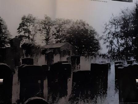 Foto Grabsteine des jüdischen Friedhofes in Buttenheim